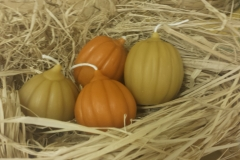 Perfect for fall decoration or Thanksgiving centerpiece!