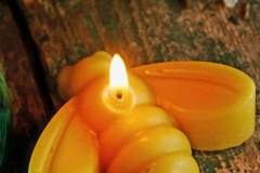 Beautiful photo showing our Honey Bee Candle burning....